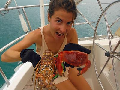 Fotografía de langostas y centollos recién pescadas