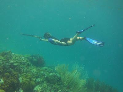 Fotografía bajo el agua pescando con arpón