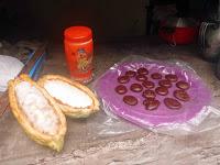 Foto del fruto del cacao, las pastillas del cacao y un bote de Nesquik