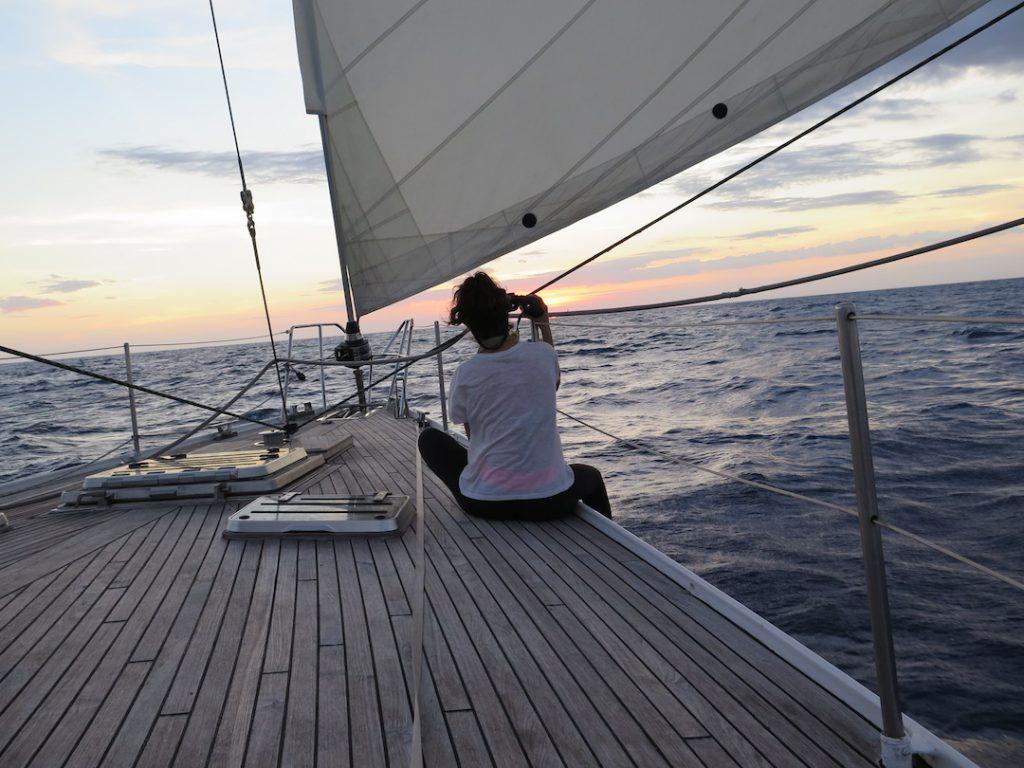 prismáticos velero