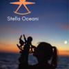 StellaOceani-Astronavigation-Sextante